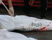 العثور على جُثتين لشابين مصابين بطلق نارى داخل أرض زراعية بمركز أبشواي | صوت مصر نيوز