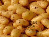 تعرف علي فوائد البطاطس وكيفية التخلص من الوزن الزائد | صوت مصر نيوز