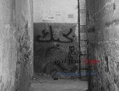 متي نكون في حاجة إلي الحب .. ؟ | صوت مصر نيوز