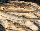 ضبط أكثر من 2 طن أسماك مملحة مجهولة المصدر وغير صالحة للإستهلاك بحيازة سائق بالفيوم|صوت مصر نيوز