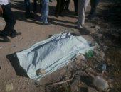 مصرع شخص وإصابة آخر بطلق ناري في مشاجرة بقرية اللاهون بالفيوم | صوت مصر نيوز