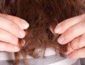 تعرف على كيفية علاج الشعر بعد التعافي من كورونا|صوت مصر نيوز